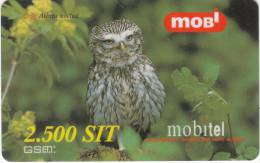 SLOVENIA - Owl, Athene Noctua, Bird, Mobitel Prepaid Card 2500 Sit,CN : 000064752, Tirage 60000, Exp.date 31/12/00, Used - Eslovenia
