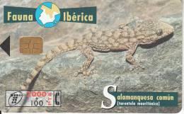 SPAIN - Lizard, 12/98, Used