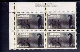 """CANADA, 1975, # 667ii, CALGARY CENTENNIAL  ,     MNH      VARIETY """"FLY BESIDE MANE"""" ROW 2 , ON 2 STAMPS - Blocks & Sheetlets"""