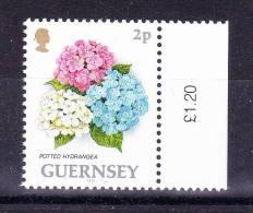 GUERNSEY  1993 ,Def´s - Flowers   , Y&T #  606 - 2 P     , Cv 0,20  E , ** M N H , V V F - Guernesey