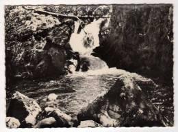 63 : Latour D´Auvergne :  La Cascade Du Pont De Pierre ( CpsmG.F. ) - Otros Municipios