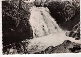 63 : Latour D´Auvergne :  La Cascade Du Gour De Chevaux ( Cpsm G.F. ) - Otros Municipios