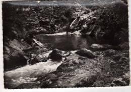 63 : Latour D´Auvergne :   Cascade Ste-Elisabeth ( Cpsm G.F. ) - Otros Municipios