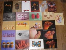 Lot De 24 CPM - BEBES - ANNE GEDDES - Cartoline
