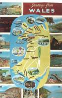 CP - WALES - MULTIVUES - CARTE - THE HARBOUR TENBY - CONEY BEACH PORTHCAWL - CAERNARVON CASTLE - ABERSOCH BEACH - FAIRBO - Wales