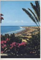 GRAN CANARIA -playa Del Ingles - 1982 - Gran Canaria