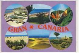 GRAN CANARIA - Multicard - 1993 - Gran Canaria