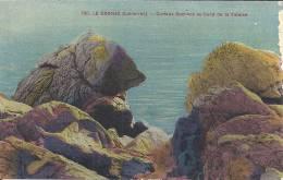 PAYS DE LA LOIRE - 44 - LOIRE ATLANTIQUE - LE CROISIC - Curieux Rochers Bord De Falaise - Le Croisic
