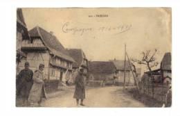 Friessen: Campagne 1914-15 (13-1012) - France