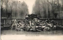 VERSAILLES BASSIN DE NEPTUNE NEPTUNE ET AMPPHITRITE MOTIF EN PLOMB - Versailles (Château)