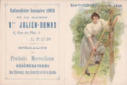¤¤  -  LYON  -  Calendrier Lunaire De 1903 De La Maison Julien Dumas 6 Rue Du Plat - Régénérateur De Cheveux   -  ¤¤ - Calendriers