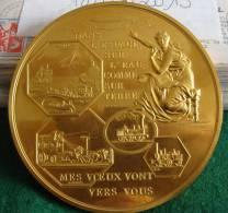 MEDAILLE BRONZE 1966 MES VOEUX VONT VERS VOUS GRAVEUR J.C PETIT ET E.DUBOIS EDITION MONNAIE DE PARIS - France