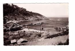 83 Ile Du Levant Port Du Grand Avis N°4201 - France