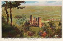 43. Bas En Basset. Chateau De Rochebaron - Other Municipalities