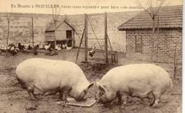 78 Houilles, Viens Nous Rejoindre Pour Faire Une Manille, Cochon - Houilles