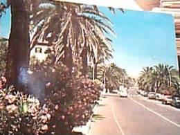 GROTTAMMARE  VIALE  VB1981   EF14475 - Ascoli Piceno