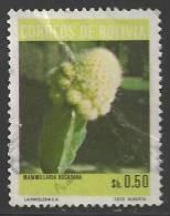 1973 0.50b Cactus, Used - Bolivia
