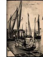 Cpa  ANIM2E  -  23/07/1906  -  LE  TREPORT - Non Classés