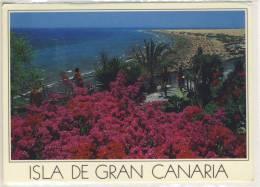 GRAN CANARIA - Playa Del Ingles - 1988 - Gran Canaria