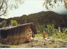-- ANJOUAN -- DEMEURE  PAYSANNE -- - Comores
