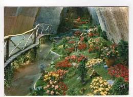 CPM 10*15/Y744/DOUE LA FONTAINE CITE DES ROSES - Doue La Fontaine