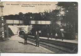 Belgique-Belgi� CP Nessonvaux Passerelle&Tunnel du Chemin de Fer BXL-Cologne plis de coins PR153