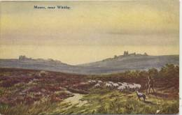 WHITBY MOORS - By W GIBSON - Whitby