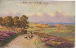 WHITBY - SLEIGGHTS MOOR - BLUE BANK TOP By HANNAFORD - Whitby
