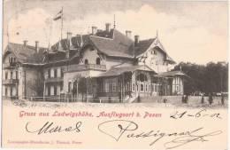 Gruss Aus Ludwigshöhe Bei Posen Belebt 21.6.1902 Gelaufen Als Drucksache - Posen