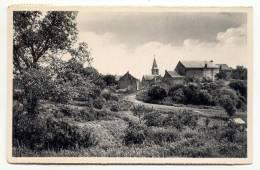 MESNIL-ST-BLAISE-SENTIER DU WAREAU-CARTE ENVOYEE 1959-EDIT.MME GREGOIRE-RAFIN-LIBRAIRIE-MESNIL ST.BLAISE - Houyet