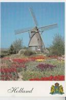 MÜHLE - Molen - Mill, Windmühle Limmen/Castricum Noordholland - Windmills