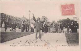 PARIS VECU CHARMEUR D'OISEAUX  AUX TUILERIES 1905 - Petits Métiers à Paris