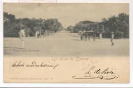 3797-LIVORNO-VIALE DELL´ARDENZA-CALESSE-ANIMATA-1901-FP - Livorno