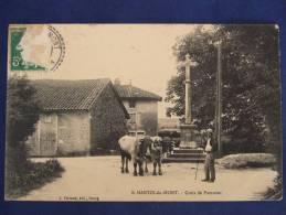 SAINT MARTIN DU MONT Croix De Pommier   Animée ( Boeufs ) - Autres Communes