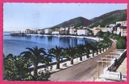 20 -335 -  CORSE - AJACCIO - Boulevard Albert 1er - Ajaccio