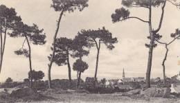 CPA  39  -TREGUNC - Panorama - Trégunc