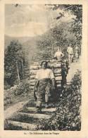 88 Un Schlitteur Dans Les Vosges - France