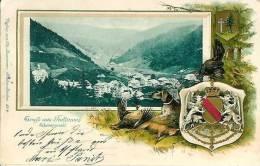 GRUSS AUS FODTMOOS  (carte Gauffrée) - Waldshut-Tiengen