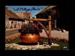39 - COGNA - Village Fleuri - 39.201.27 - France