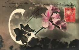 Alphabet Lettre G - (7175) - Cartes Postales