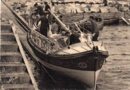 -CPA - 50 - Environs De Cherbourg - DANS LA HAGUE - Rentrée Du Canot De Sauvetage De Goury - 513 - Frankrijk