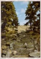 Himmelsleiter Zum Lusengipfel , Bayerischer Wald - Deutschland