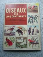 OISEAUX DES CINQ CONTINENTS - Encyclopédies