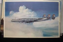CONSTELLATION         KLM      AIRLINE ISSUE - 1946-....: Moderne