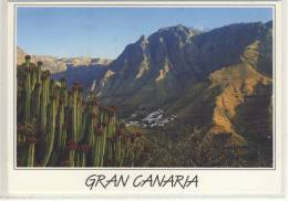 GRAN CANARIA - Valle De Agaete - 1997 - Gran Canaria