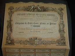 """Obligation""""Cie Nationale Des Canaux Agricoles""""Paris 1878 Excellent état Reste Des Coupons. - Agriculture"""
