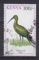 Kenya 1993 Mi. 585     100 Sh Bird Vogel Oiseau Hagedash Hadada Ibis - Kenia (1963-...)