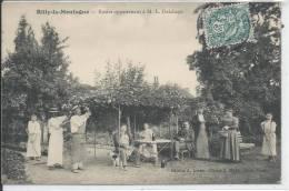 RILLY LA MONTAGNE - Rosier Appartenant à ML Delahaye - Rilly-la-Montagne