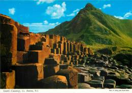 Giant's Causeway, Co Antrim, Northen Ireland Postcard Used Posted To UK 2004 Stamp - Antrim / Belfast