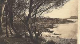 ILE De PORT-CROS (Var) - Une Plage De L'île - Parc De L'Hostellerie Provençale - 1932 - Altri Comuni